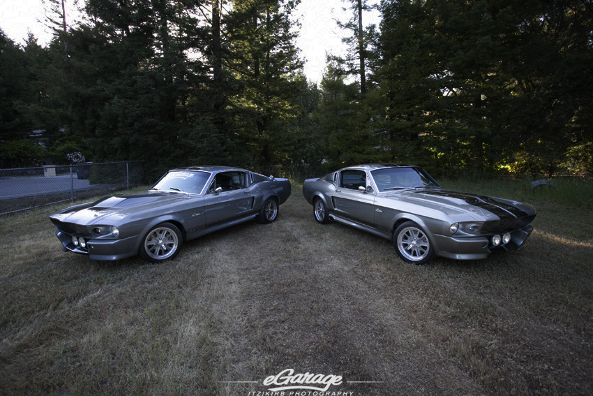 GT500 Eleanor Shelby Eleanor: The Perfect Date